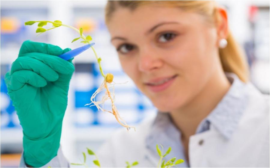 La medicina natural. Curso con Reconocimiento de Oficialidad por la Administración Pública